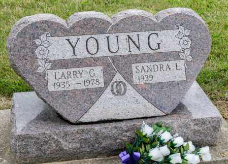 YOUNG, LARRY G - Richland County, Ohio   LARRY G YOUNG - Ohio Gravestone Photos