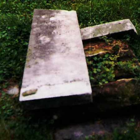 YOUNG, LOUISA - Richland County, Ohio | LOUISA YOUNG - Ohio Gravestone Photos