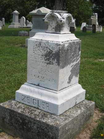 ZEIGLER, ELIZABETH - Richland County, Ohio | ELIZABETH ZEIGLER - Ohio Gravestone Photos