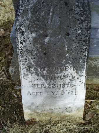 ALBIN, LAURA A. - Ross County, Ohio | LAURA A. ALBIN - Ohio Gravestone Photos