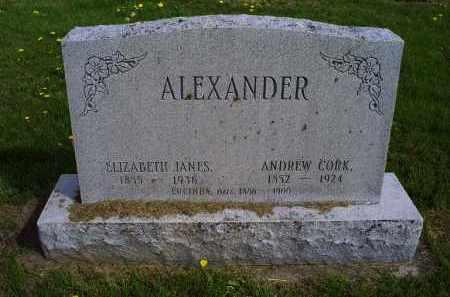 ALEXANDER, ANDREW CORK - Ross County, Ohio | ANDREW CORK ALEXANDER - Ohio Gravestone Photos