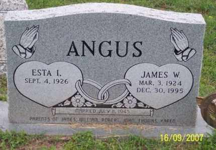 ANGUS, JAMES W. - Ross County, Ohio | JAMES W. ANGUS - Ohio Gravestone Photos