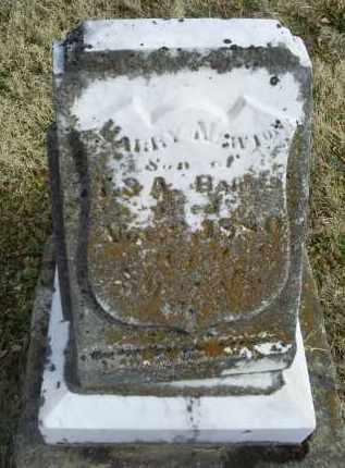 BARNES, HARRY NEWTON - Ross County, Ohio | HARRY NEWTON BARNES - Ohio Gravestone Photos