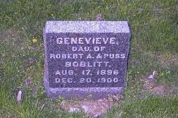 BOBLITT, GENEVIEVE - Ross County, Ohio | GENEVIEVE BOBLITT - Ohio Gravestone Photos