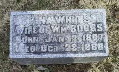 WHITSEL BOGGS, LOVINA - Ross County, Ohio   LOVINA WHITSEL BOGGS - Ohio Gravestone Photos