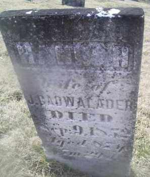 CADWALDER, HANNAH - Ross County, Ohio | HANNAH CADWALDER - Ohio Gravestone Photos