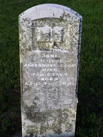 CAGLE, JANE - Ross County, Ohio | JANE CAGLE - Ohio Gravestone Photos