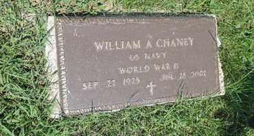 CHANEY, WILLIAM A - Ross County, Ohio   WILLIAM A CHANEY - Ohio Gravestone Photos