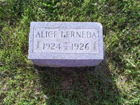 COY, ALICE BERNEDA - Ross County, Ohio | ALICE BERNEDA COY - Ohio Gravestone Photos