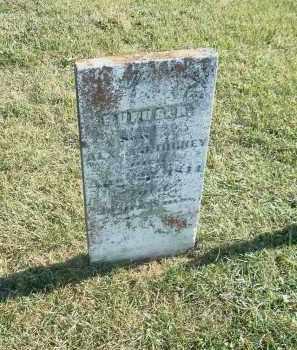 DICKEY, RUFUS HARRISON - Ross County, Ohio | RUFUS HARRISON DICKEY - Ohio Gravestone Photos