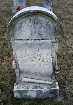 DUMP, SARAH - Ross County, Ohio | SARAH DUMP - Ohio Gravestone Photos