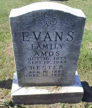 EVANS, HESTER - Ross County, Ohio | HESTER EVANS - Ohio Gravestone Photos
