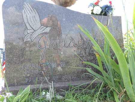 GALLAUGHER, CHARLES - Ross County, Ohio | CHARLES GALLAUGHER - Ohio Gravestone Photos