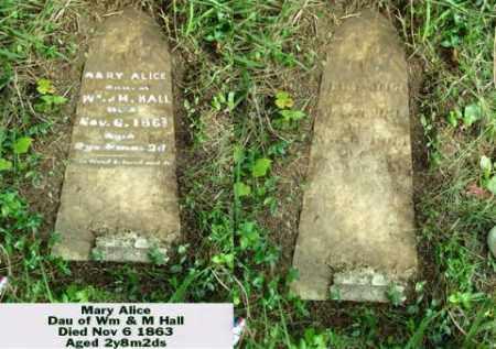 HALL, MARY ALLICE - Ross County, Ohio   MARY ALLICE HALL - Ohio Gravestone Photos