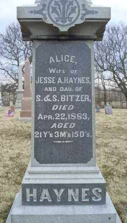 HAYNES, ALICE - Ross County, Ohio | ALICE HAYNES - Ohio Gravestone Photos