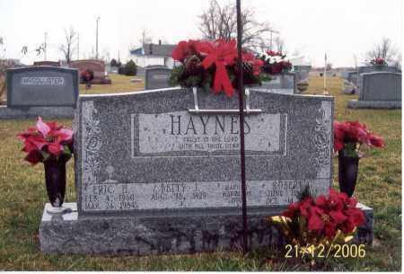 HAYNES, ROBERT G. - Ross County, Ohio | ROBERT G. HAYNES - Ohio Gravestone Photos