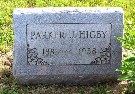 HIGBY, PARKER JOHNSON - Ross County, Ohio | PARKER JOHNSON HIGBY - Ohio Gravestone Photos
