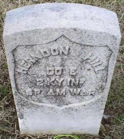 HILL, HERNDON - Ross County, Ohio   HERNDON HILL - Ohio Gravestone Photos