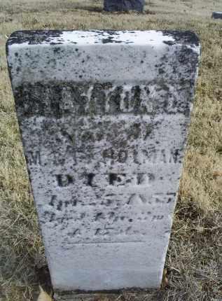 HOLMAN, CLAYTON - Ross County, Ohio | CLAYTON HOLMAN - Ohio Gravestone Photos