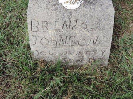 JOHNSON, BRENDA  C - Ross County, Ohio   BRENDA  C JOHNSON - Ohio Gravestone Photos