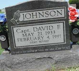 JOHNSON, DAVID F. - Ross County, Ohio | DAVID F. JOHNSON - Ohio Gravestone Photos