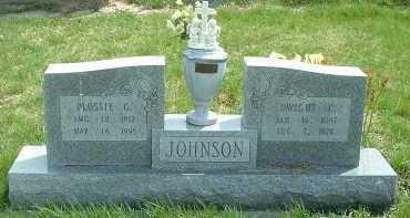 JOHNSON, DWIGHT C. - Ross County, Ohio | DWIGHT C. JOHNSON - Ohio Gravestone Photos