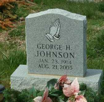 JOHNSON, GEORGE H. - Ross County, Ohio | GEORGE H. JOHNSON - Ohio Gravestone Photos
