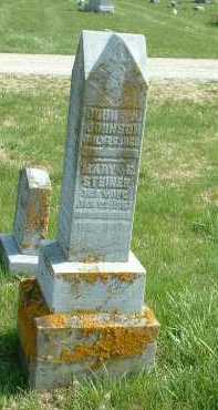 STEINER JOHNSON, MARY E. - Ross County, Ohio | MARY E. STEINER JOHNSON - Ohio Gravestone Photos