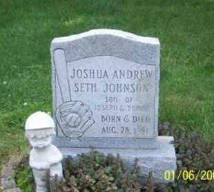 JOHNSON, JOSHUA ANDREW SETH - Ross County, Ohio | JOSHUA ANDREW SETH JOHNSON - Ohio Gravestone Photos