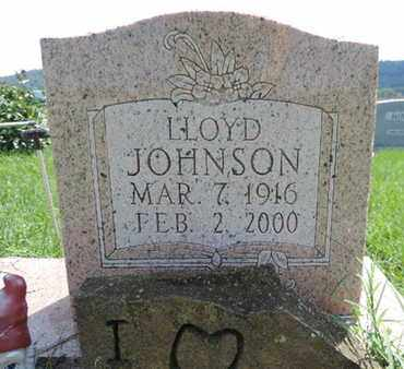 JOHNSON, LLOYD - Ross County, Ohio | LLOYD JOHNSON - Ohio Gravestone Photos