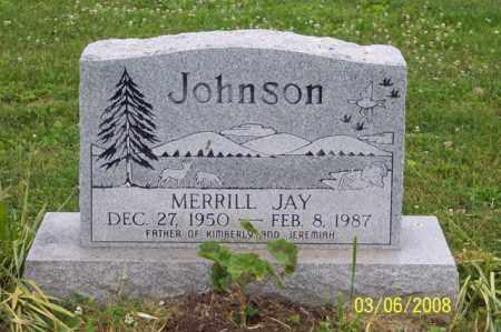 JOHNSON, MERRILL JAY - Ross County, Ohio   MERRILL JAY JOHNSON - Ohio Gravestone Photos