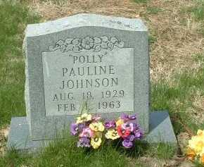 JOHNSON, PAULINE - Ross County, Ohio | PAULINE JOHNSON - Ohio Gravestone Photos