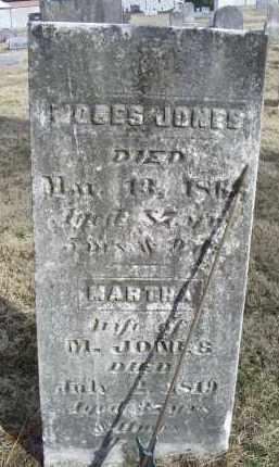 JONES, MOSES - Ross County, Ohio | MOSES JONES - Ohio Gravestone Photos