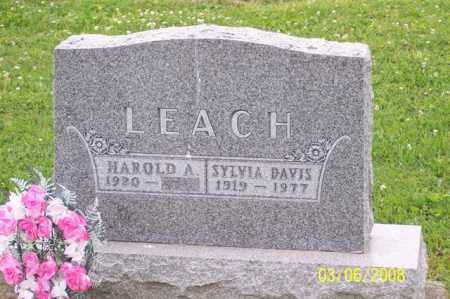 LEACH, SYLVIA - Ross County, Ohio | SYLVIA LEACH - Ohio Gravestone Photos