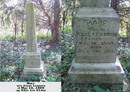 LEASURE, MARY - Ross County, Ohio | MARY LEASURE - Ohio Gravestone Photos