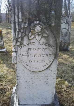 LIEBE, DAVID - Ross County, Ohio | DAVID LIEBE - Ohio Gravestone Photos