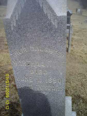 LITTLE, MARTHA - Ross County, Ohio | MARTHA LITTLE - Ohio Gravestone Photos