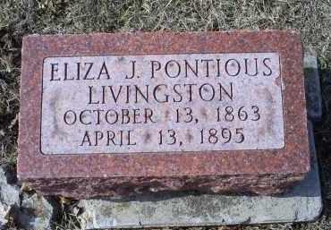 LIVINGSTON, ELIZA J. - Ross County, Ohio | ELIZA J. LIVINGSTON - Ohio Gravestone Photos