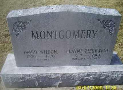 MONTGOMERY, DAVID WILSON - Ross County, Ohio | DAVID WILSON MONTGOMERY - Ohio Gravestone Photos