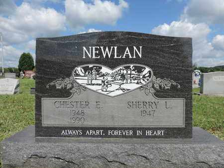 NEWLAN, SHERRY L. - Ross County, Ohio | SHERRY L. NEWLAN - Ohio Gravestone Photos