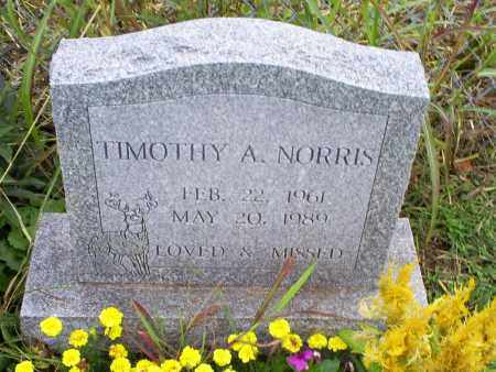 NORRIS, TIMOTHY A. - Ross County, Ohio | TIMOTHY A. NORRIS - Ohio Gravestone Photos