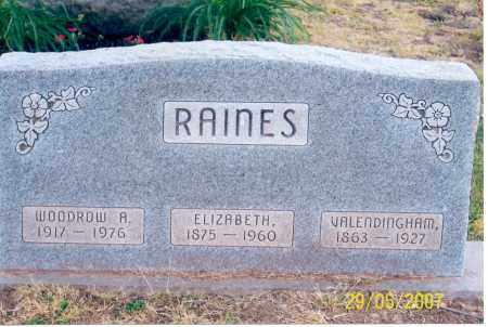 RAINES, ELIZABETH - Ross County, Ohio | ELIZABETH RAINES - Ohio Gravestone Photos