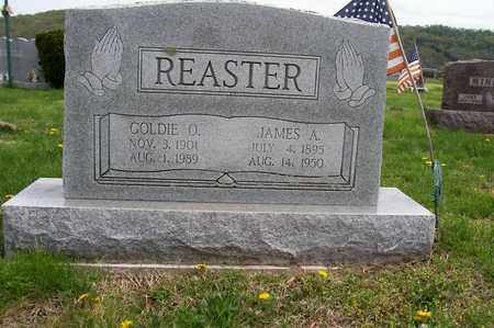 REASTER, JAMES - Ross County, Ohio | JAMES REASTER - Ohio Gravestone Photos