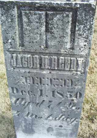 REEDY, JACOB H. - Ross County, Ohio | JACOB H. REEDY - Ohio Gravestone Photos