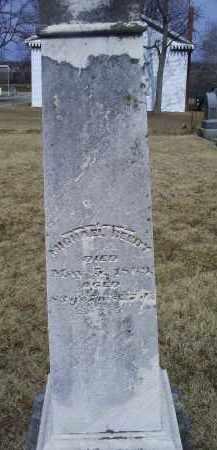 REEDY, MICHAEL - Ross County, Ohio | MICHAEL REEDY - Ohio Gravestone Photos
