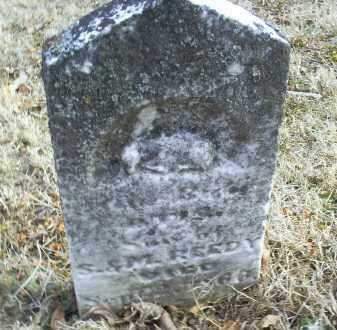 REEDY, OTIS - Ross County, Ohio | OTIS REEDY - Ohio Gravestone Photos