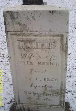 RENICK, HANNAH - Ross County, Ohio | HANNAH RENICK - Ohio Gravestone Photos