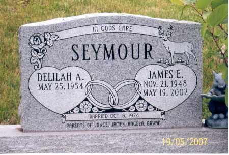 SEYMOUR, JAMES E. - Ross County, Ohio   JAMES E. SEYMOUR - Ohio Gravestone Photos