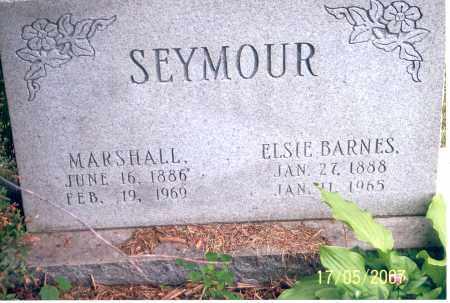 SEYMOUR, ELSIE BARNES - Ross County, Ohio | ELSIE BARNES SEYMOUR - Ohio Gravestone Photos