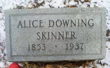 DOWNING SKINNER, ALICE - Ross County, Ohio | ALICE DOWNING SKINNER - Ohio Gravestone Photos